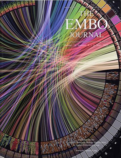EMBO Journal